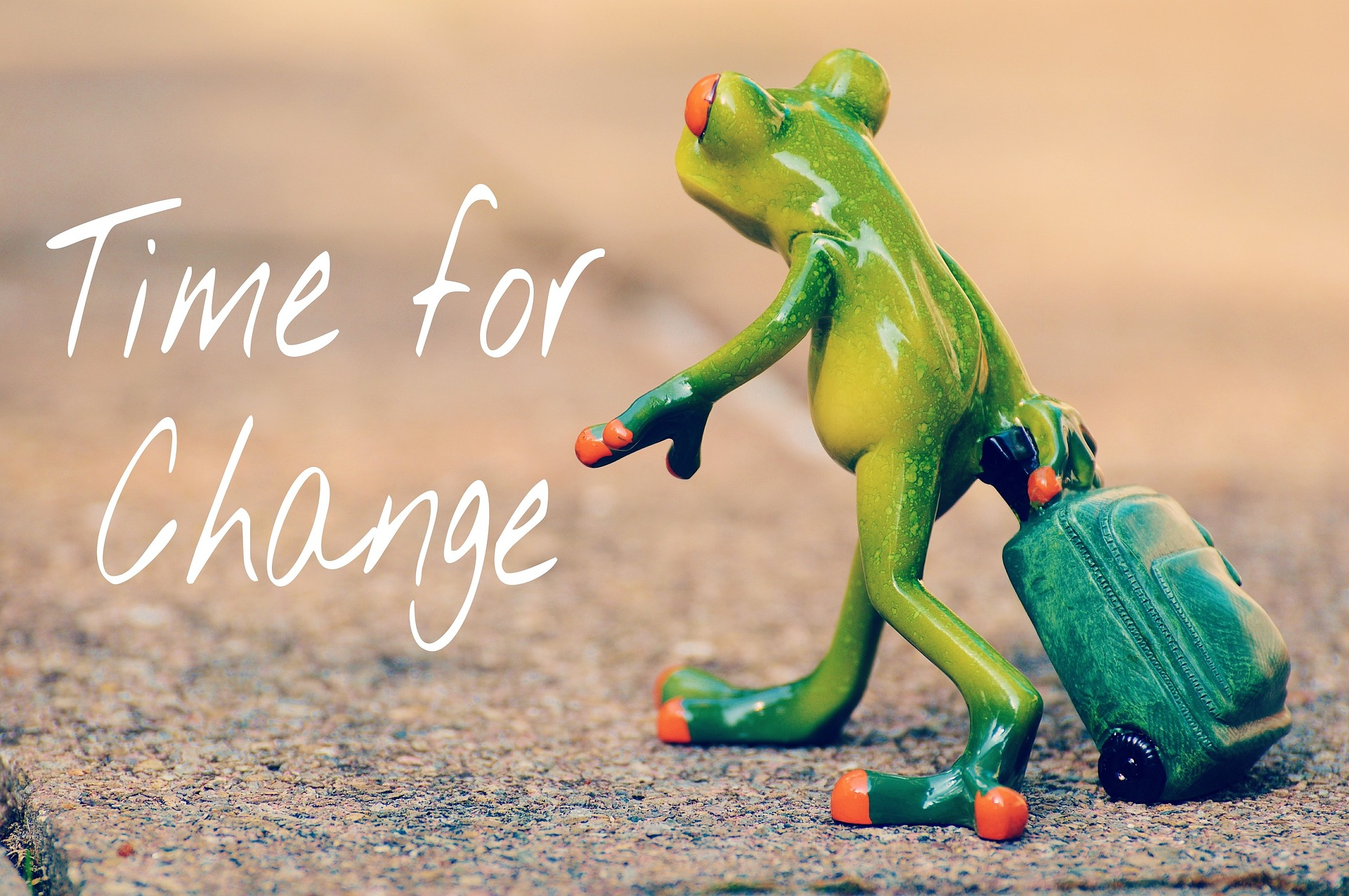 time-for-a-change-Frosch